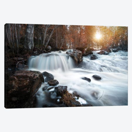 Nature I Canvas Print #STR163} by Andreas Stridsberg Canvas Art Print