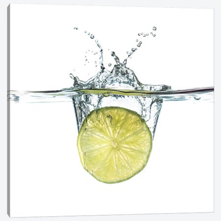 Schweppes Canvas Print #STR165} by Andreas Stridsberg Canvas Art