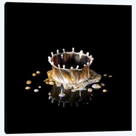 Coffee Crown Canvas Print #STR172} by Andreas Stridsberg Canvas Artwork