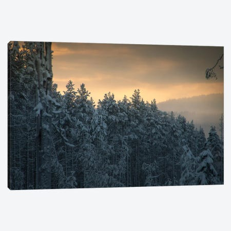 End Of Winter Canvas Print #STR176} by Andreas Stridsberg Art Print