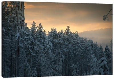 End Of Winter Canvas Art Print