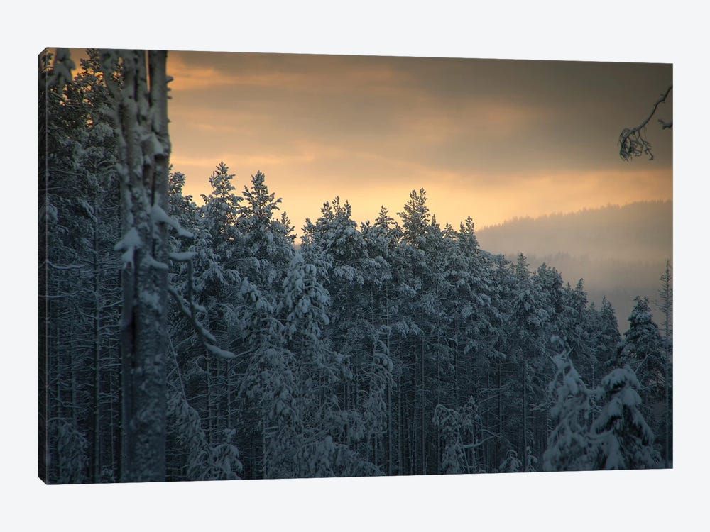 End Of Winter by Andreas Stridsberg 1-piece Canvas Print