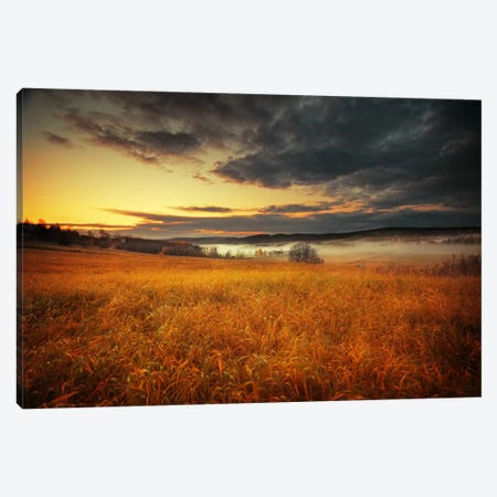 Fields Of Gold Canvas Print #STR17} by Andreas Stridsberg Canvas Art Print