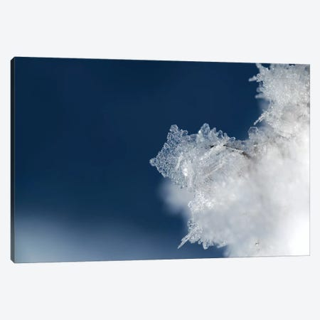 Ice Crystal Canvas Print #STR185} by Andreas Stridsberg Canvas Artwork