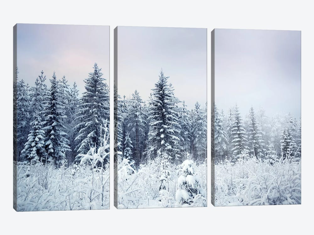 Where Christmas Trees Are Born by Andreas Stridsberg 3-piece Canvas Art