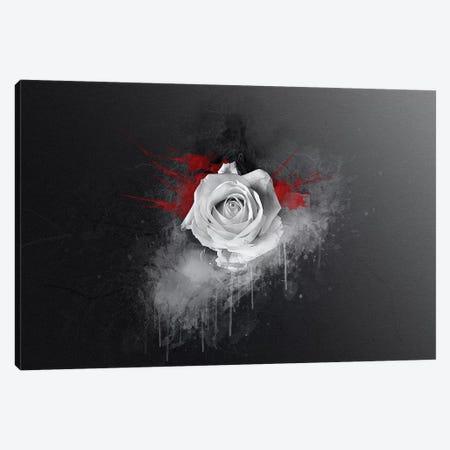 White Rose Canvas Print #STR204} by Andreas Stridsberg Canvas Print