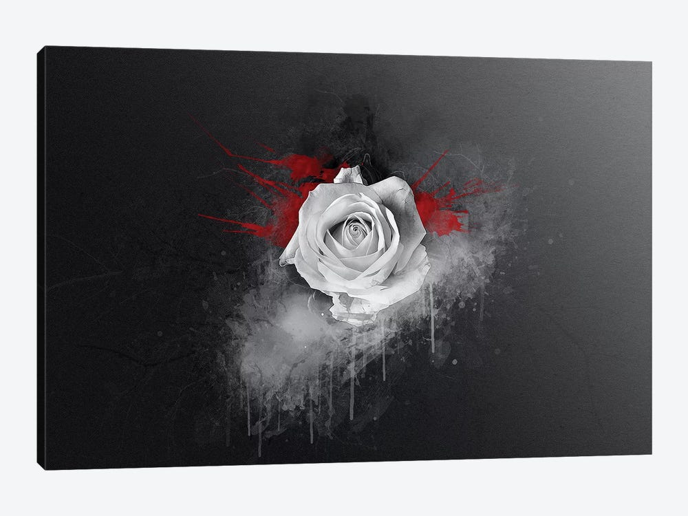 White Rose by Andreas Stridsberg 1-piece Canvas Art