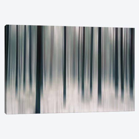 Forest In Motion Canvas Print #STR20} by Andreas Stridsberg Art Print