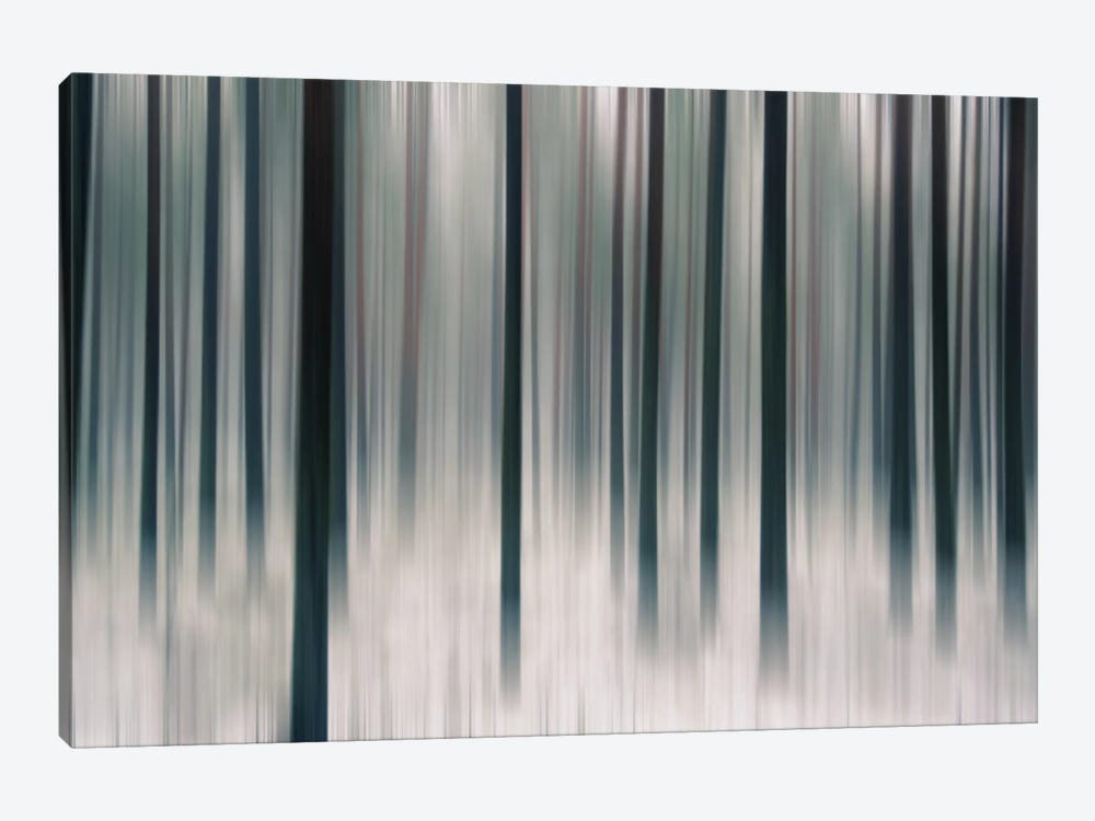 Forest In Motion by Andreas Stridsberg 1-piece Canvas Wall Art