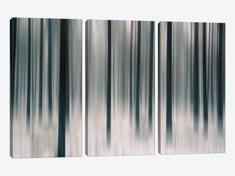 Forest In Motion by Andreas Stridsberg 3-piece Canvas Art