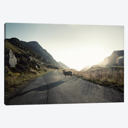 The Pass Keeper Canvas Print #STR216} by Andreas Stridsberg Canvas Wall Art