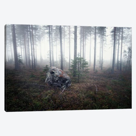 Edge Of Nowhere Canvas Print #STR222} by Andreas Stridsberg Canvas Artwork