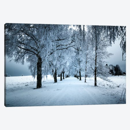 Frozen Avenue Canvas Print #STR22} by Andreas Stridsberg Canvas Print