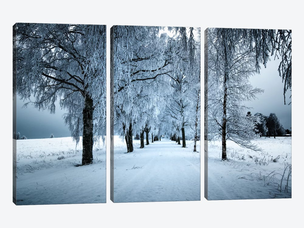 Frozen Avenue by Andreas Stridsberg 3-piece Canvas Art