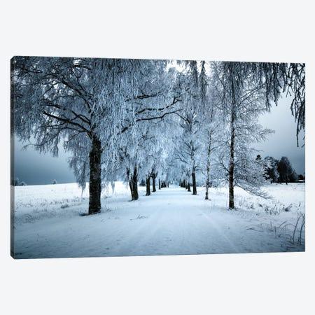 Frozen Avenue Canvas Print #STR22} by Andreas Stridsberg Canvas Print