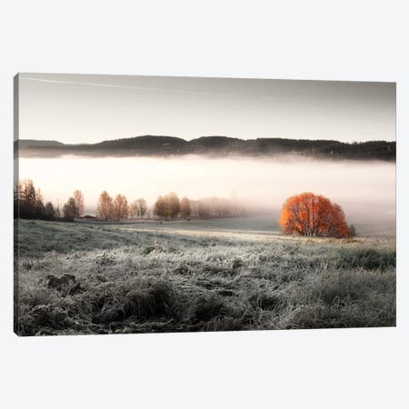Frozen Meadow Canvas Print #STR23} by Andreas Stridsberg Canvas Art Print