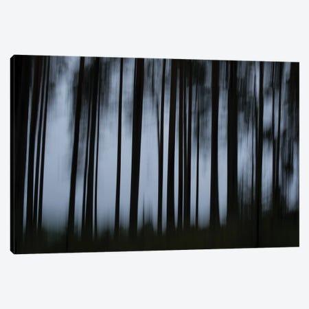 Darkness Canvas Print #STR244} by Andreas Stridsberg Art Print