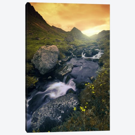 Golden Hour Canvas Print #STR24} by Andreas Stridsberg Canvas Artwork