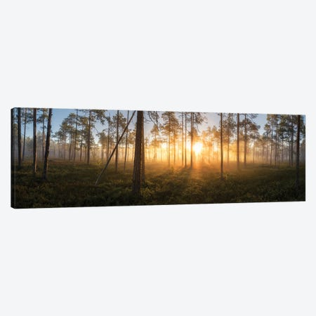 Panorama Of Silence Canvas Print #STR250} by Andreas Stridsberg Canvas Print