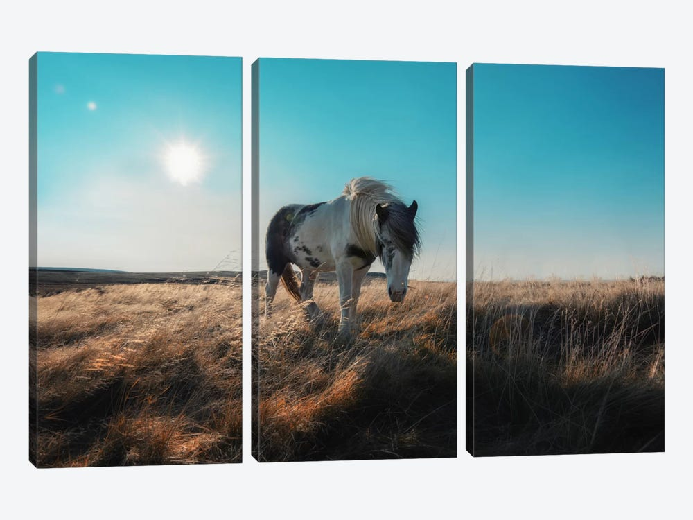 Grazeful by Andreas Stridsberg 3-piece Canvas Print