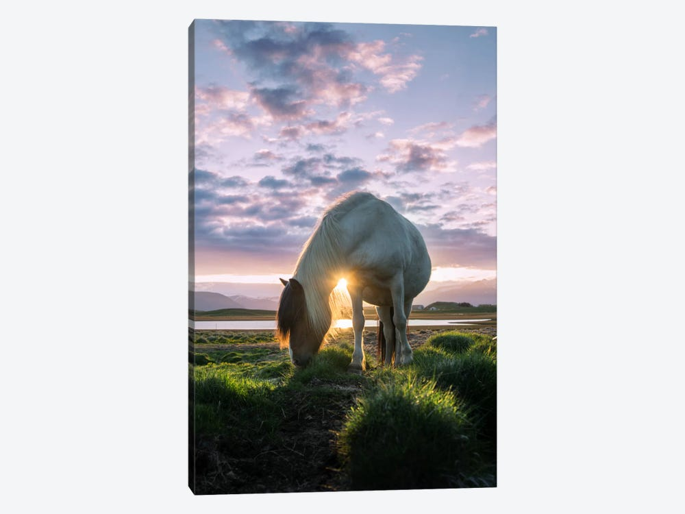 Midnight Sun by Andreas Stridsberg 1-piece Canvas Wall Art
