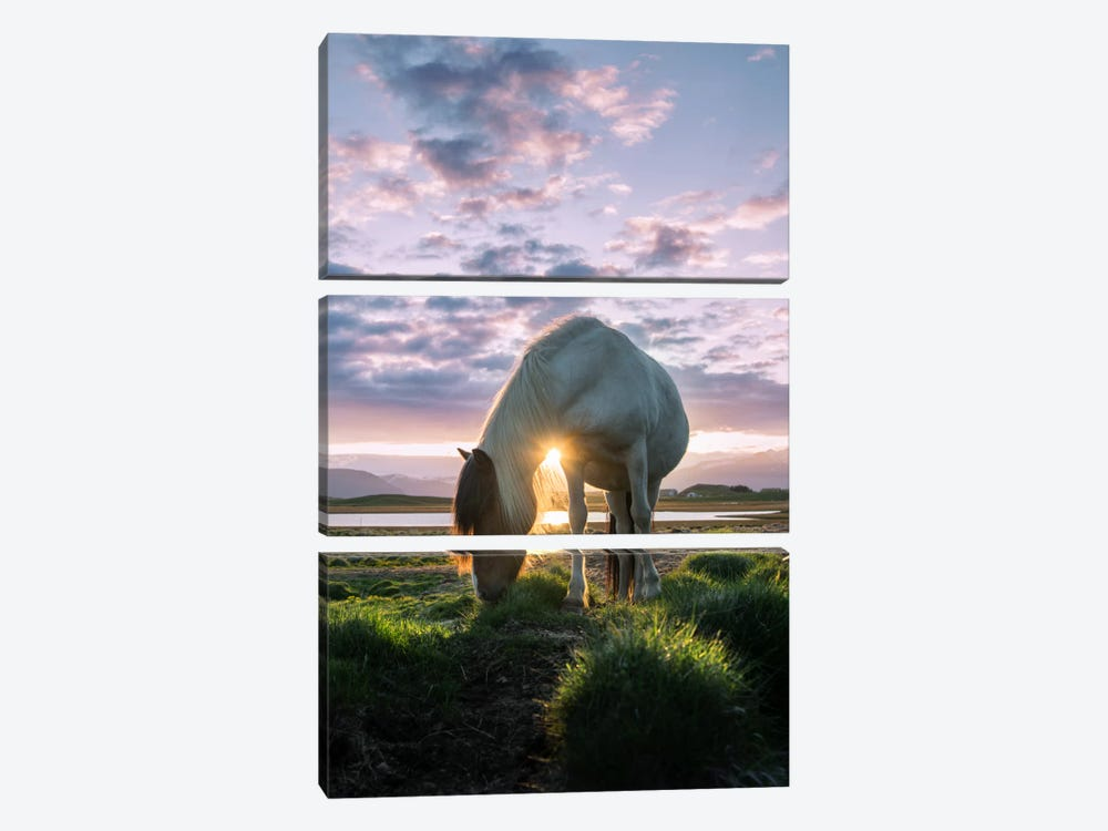 Midnight Sun by Andreas Stridsberg 3-piece Canvas Wall Art
