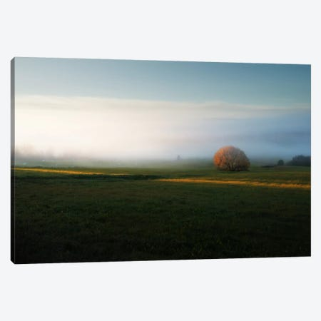 Morning Mist Canvas Print #STR39} by Andreas Stridsberg Canvas Artwork