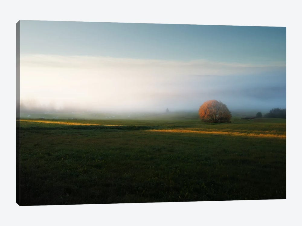 Morning Mist by Andreas Stridsberg 1-piece Canvas Art