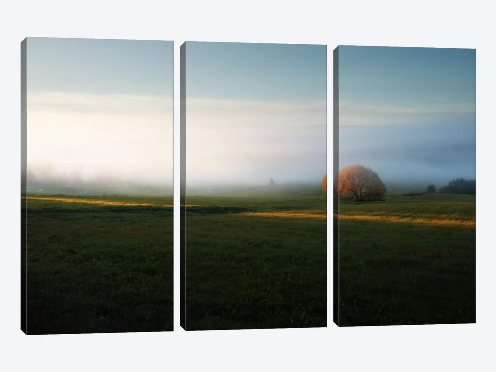 Morning Mist by Andreas Stridsberg 3-piece Canvas Art