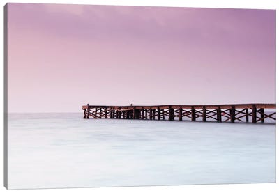 Pink Pier Canvas Art Print