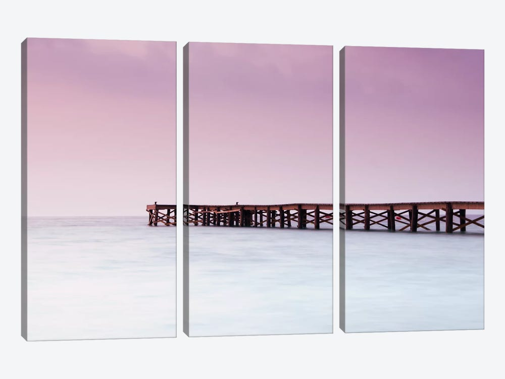 Pink Pier by Andreas Stridsberg 3-piece Art Print