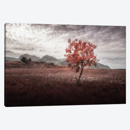 Rusted View Canvas Print #STR48} by Andreas Stridsberg Canvas Print