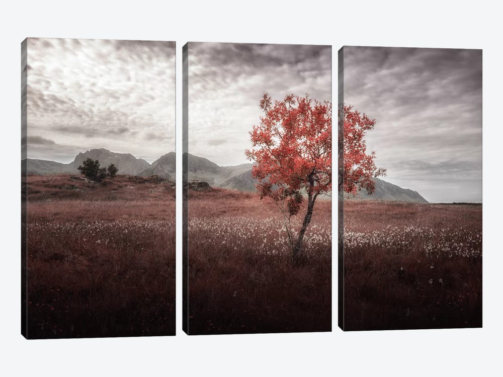 Rusted View by Andreas Stridsberg 3-piece Canvas Art