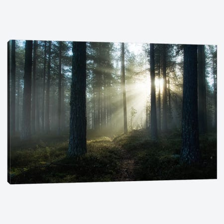 Shining Through Canvas Print #STR50} by Andreas Stridsberg Canvas Wall Art
