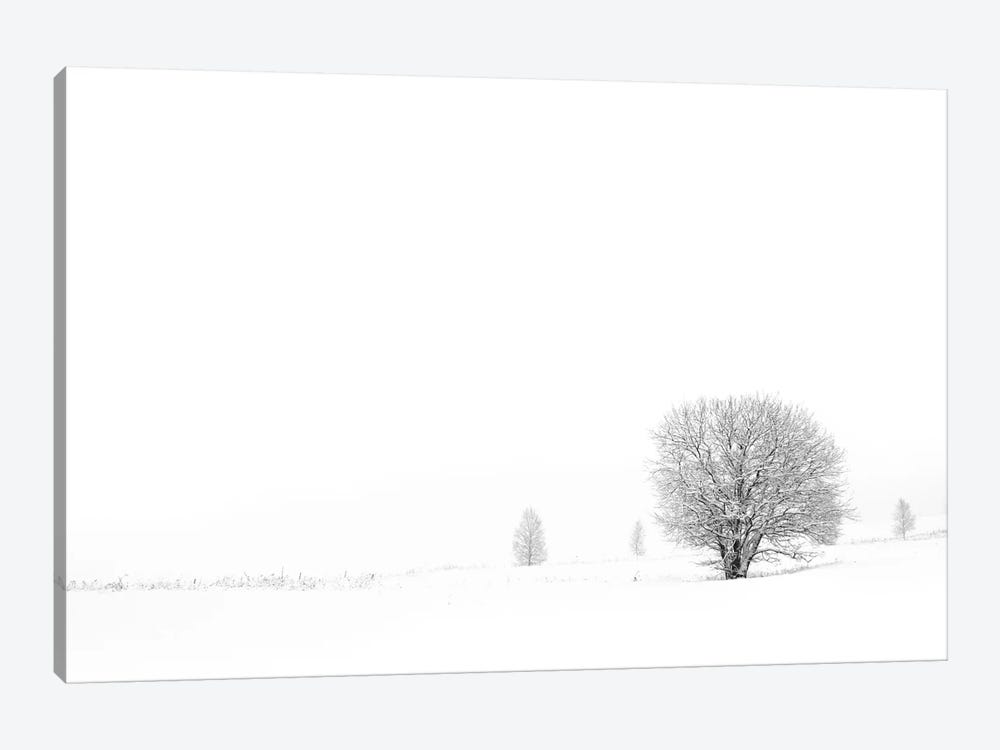 Shrouded In Snow by Andreas Stridsberg 1-piece Canvas Wall Art
