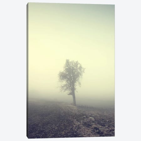 Solitude Canvas Print #STR57} by Andreas Stridsberg Canvas Print