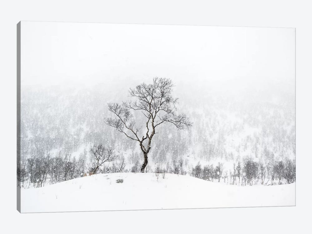 Standing Alone by Andreas Stridsberg 1-piece Canvas Wall Art
