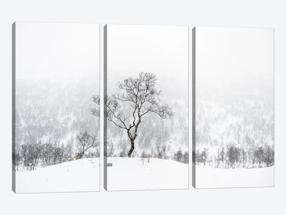 Standing Alone by Andreas Stridsberg 3-piece Canvas Artwork