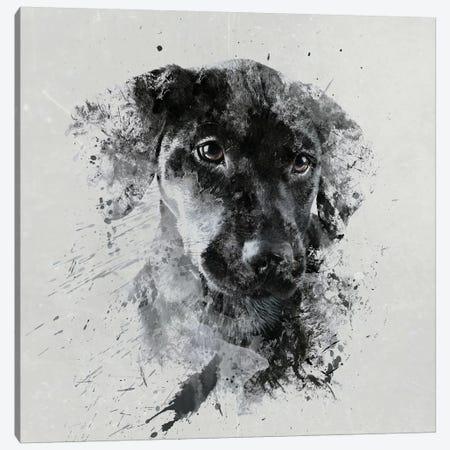 Jizza Canvas Print #STR72} by Andreas Stridsberg Canvas Artwork