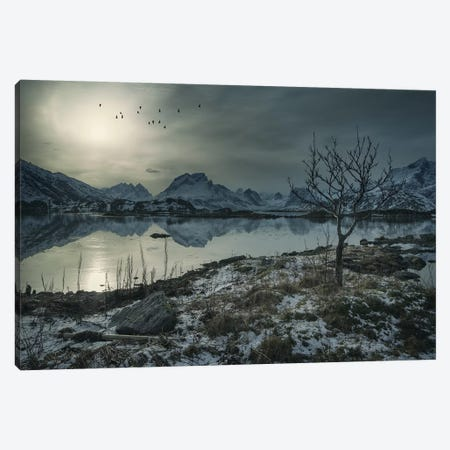 Lofoten Birds Canvas Print #STR73} by Andreas Stridsberg Canvas Art