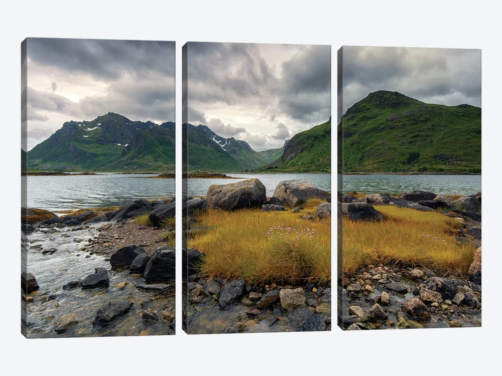 Lofoten Grass by Andreas Stridsberg 3-piece Canvas Wall Art