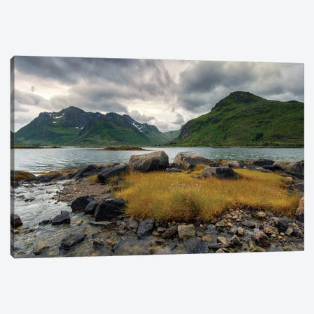 Lofoten Grass Canvas Print #STR79} by Andreas Stridsberg Canvas Art