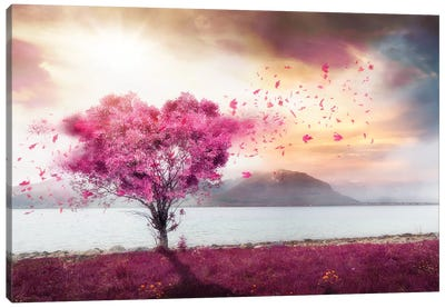 Lofoten Heart Canvas Art Print
