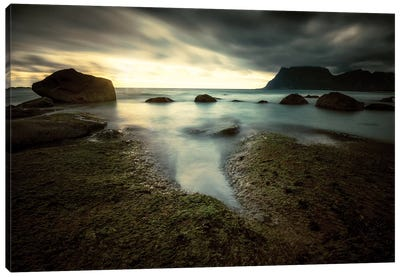 Lofoten Tide Pool Canvas Art Print