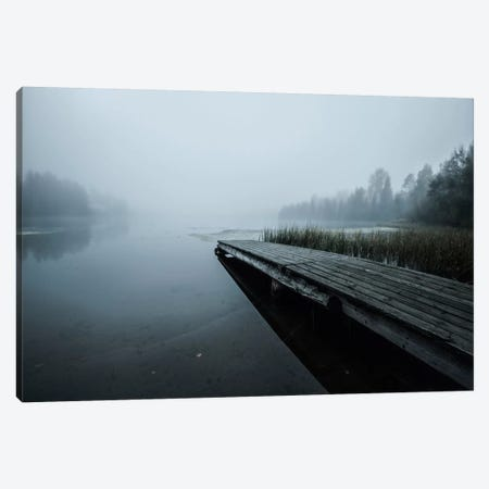 Fog Canvas Print #STR94} by Andreas Stridsberg Canvas Print