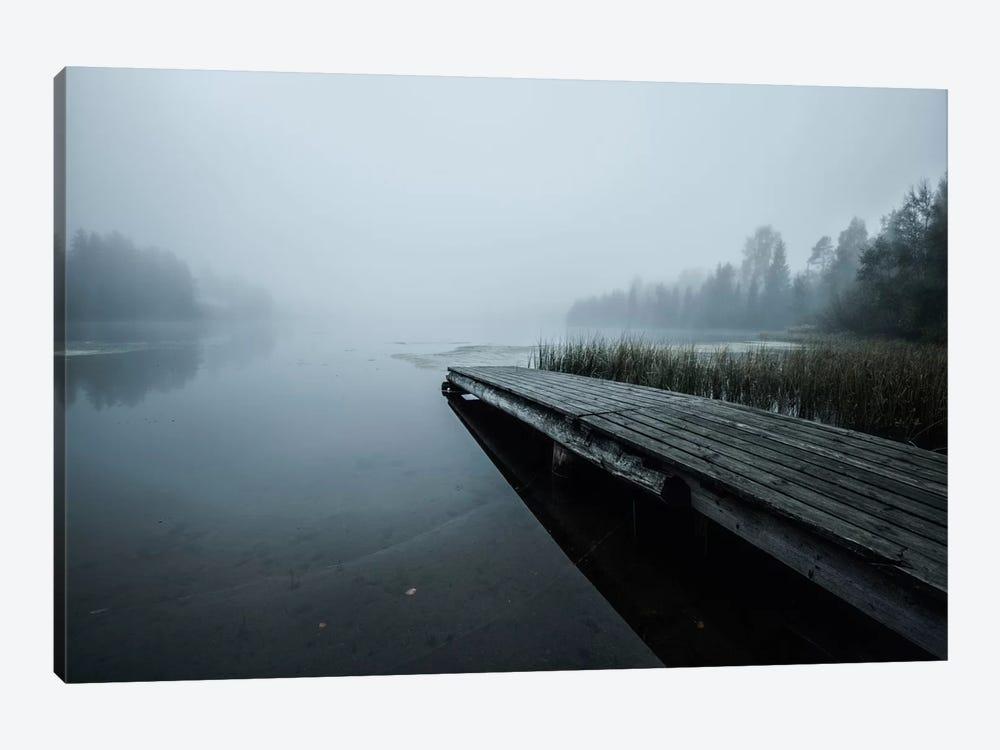Fog by Andreas Stridsberg 1-piece Canvas Art Print
