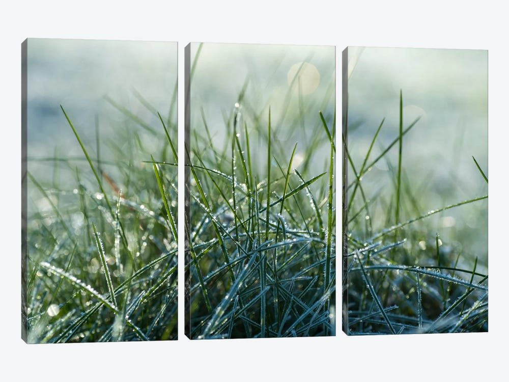 Frost III by Andreas Stridsberg 3-piece Canvas Wall Art