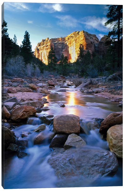 Bears Ears National Monument, Utah. USA. Creek in Arch Canyon. Manti-La Sal NF. Colorado Plateau. Canvas Art Print