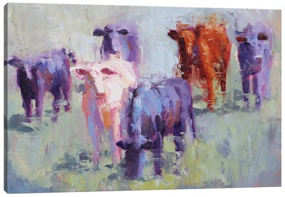 Cow Study of Mixer Canvas Art Print