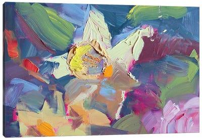 Daffodil Canvas Art Print